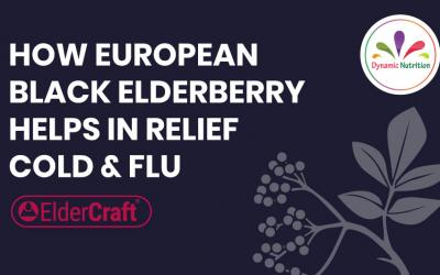 How European Black Elderberry Helps in Relief Cold & Flu